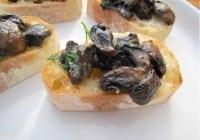 Savory Mushroom Toasts