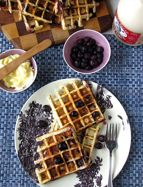 8078272169 dc2685cec9 z Blueberry Lemon Poppy Seed Waffles & OXO Giveaway!