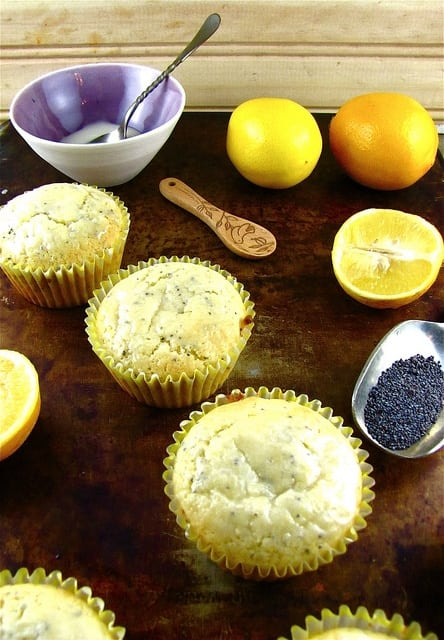 8394198509 8fb3c62d19 z Meyer Lemon Poppy Seed Muffins