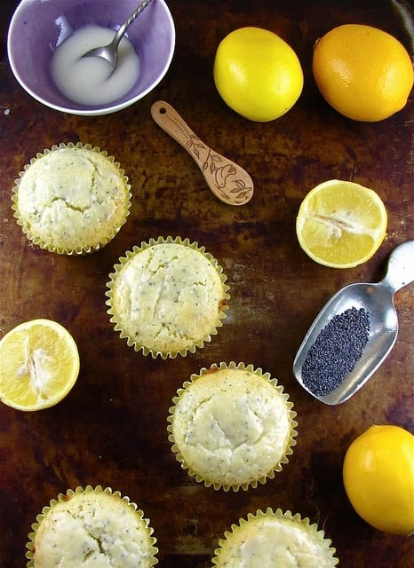 Meyer Lemon Poppy Seed Muffins | Miss in the Kitchen