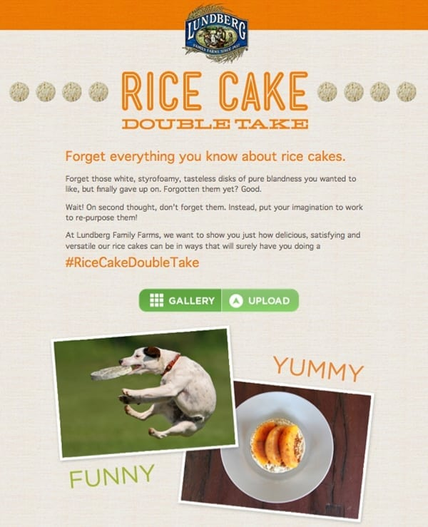 rice_cake_double_take