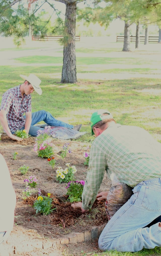 Tony and Cody planting flowers Gardening with the Family