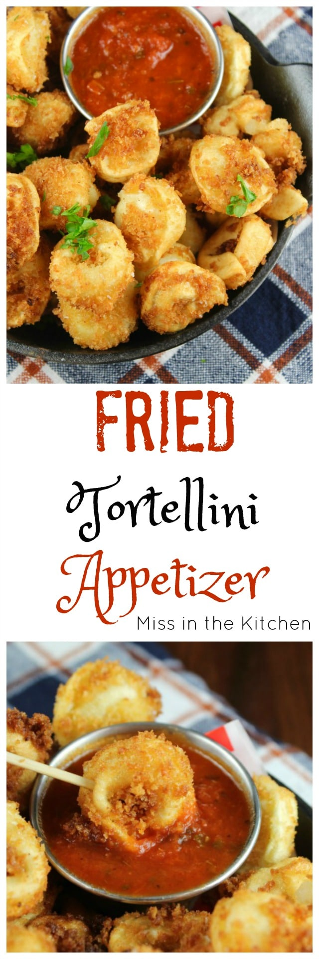 Fried Tortellini Appetizer Recipe found at MissintheKitchen.com