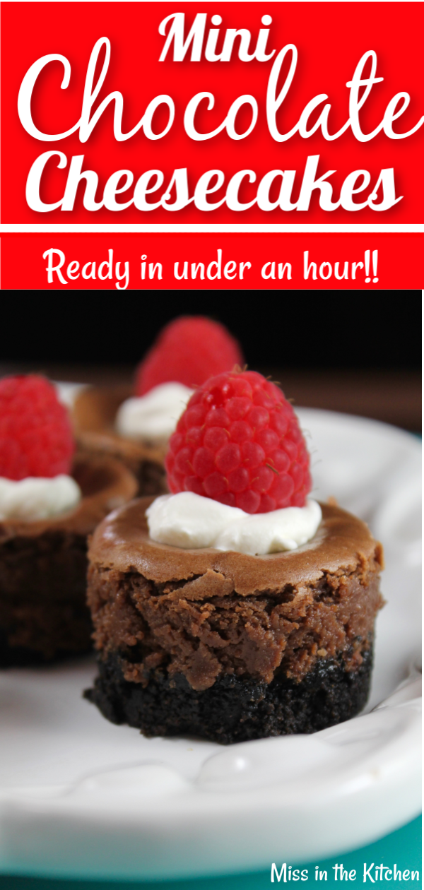 Mini Chocolate Cheesecakes with whipped cream and fresh raspberries