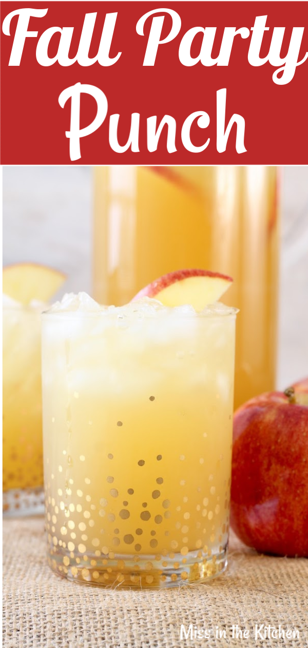 Easy Fall Party Punch Recipe with apple cider and gingerale