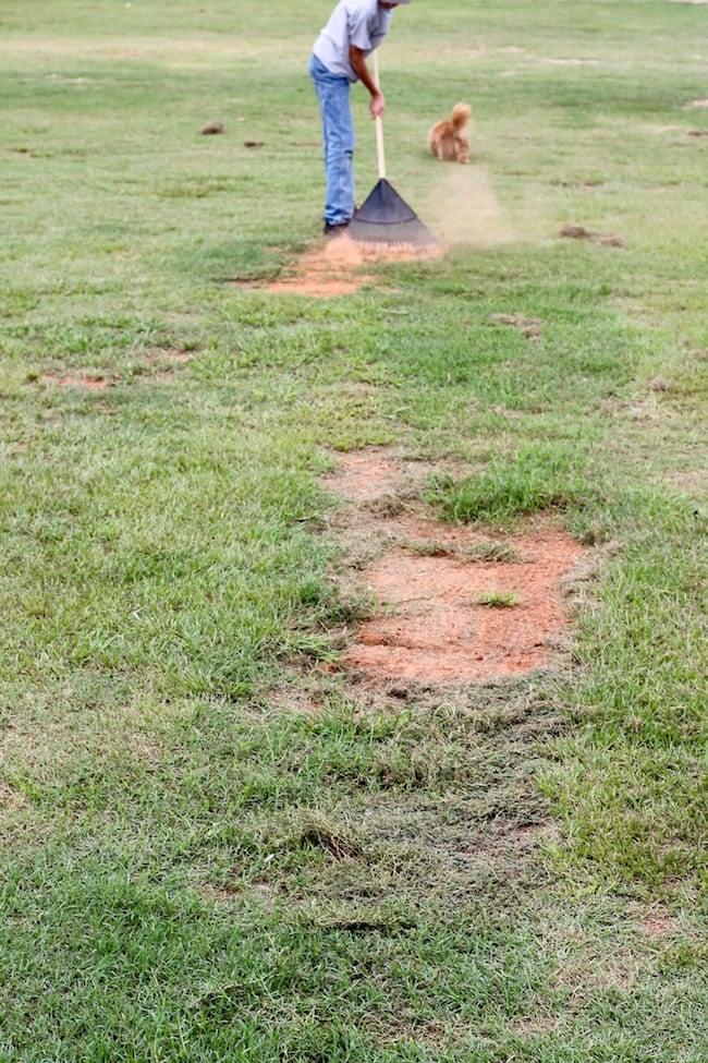 Raking for Fall Lawn Care